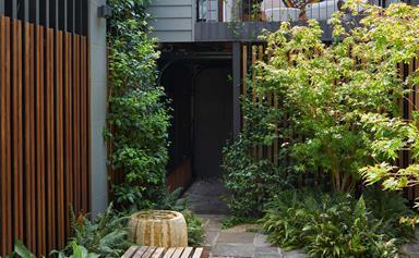 A minimalist zen-inspired courtyard garden design in Sydney