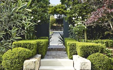 A multi-functional courtyard garden full of clever design ideas