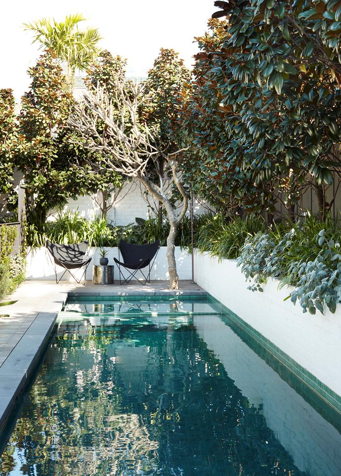 The pool was resited and reshaped to allow better circulation around the house. Butterfly chairs from Les Interieurs. Table from Robert Plumb. Garden design by Garden Life.