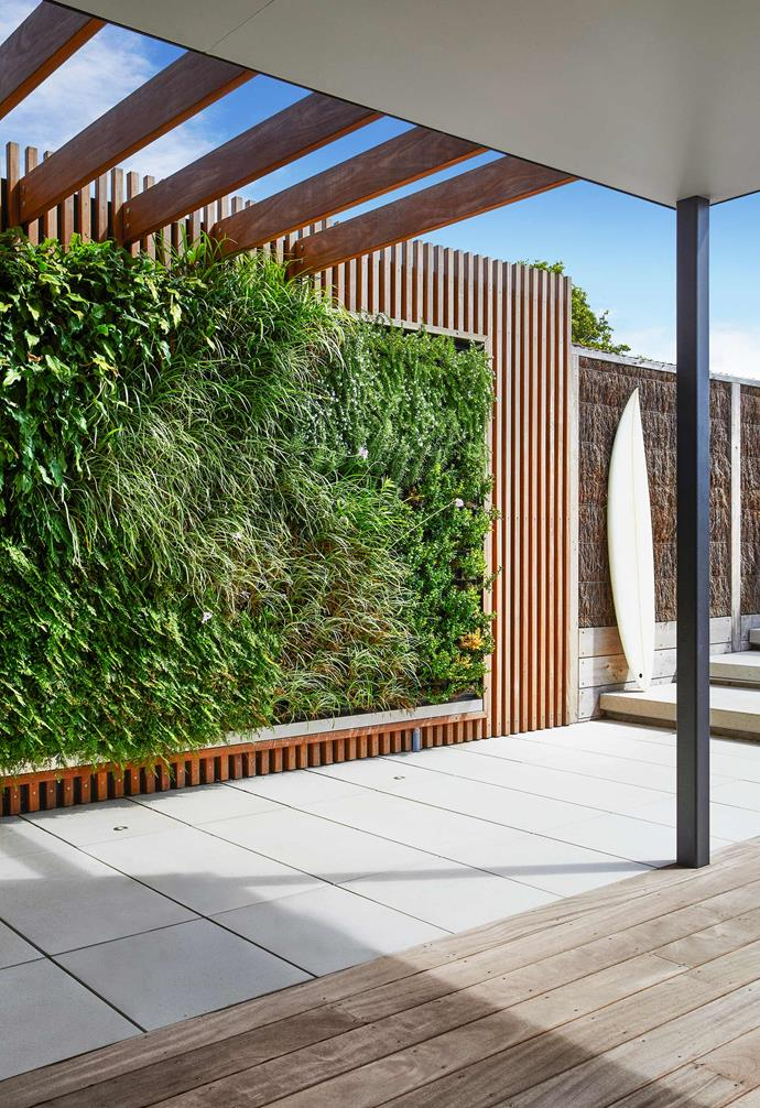 **Outdoor area** A verdant green wall adds a lush touch to the outdoor entertaining zone.