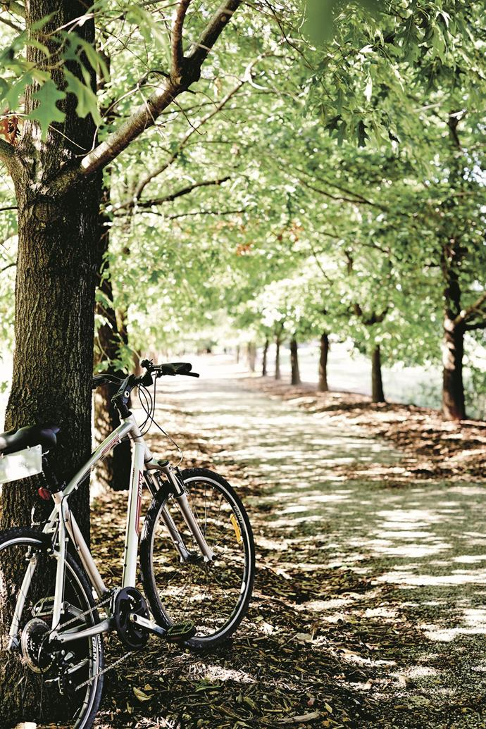 There are plenty of places to get out an enjoy nature in Beechworth.