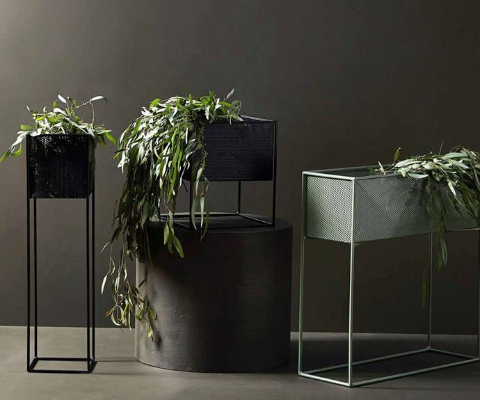 Redfox & Wilcox create beautiful powder-coated steel planters.