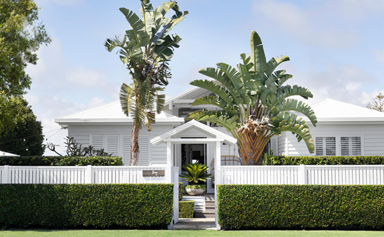 A wash of white paint brought new life to this Hervey Bay oasis