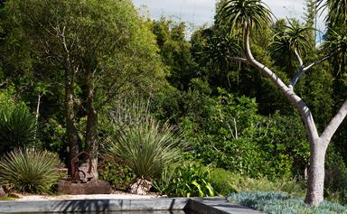 A sprawling garden in Byron Bay filled with native and exotic plants