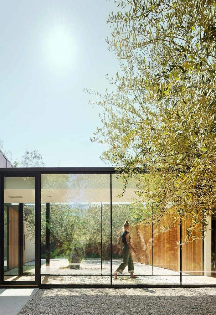 **Walkway** Glass walls make travelling between pavilions a visual treat.