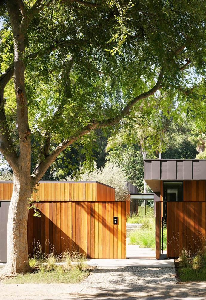**Garden** Entry to the property is through a stunning western-red-cedar fence.