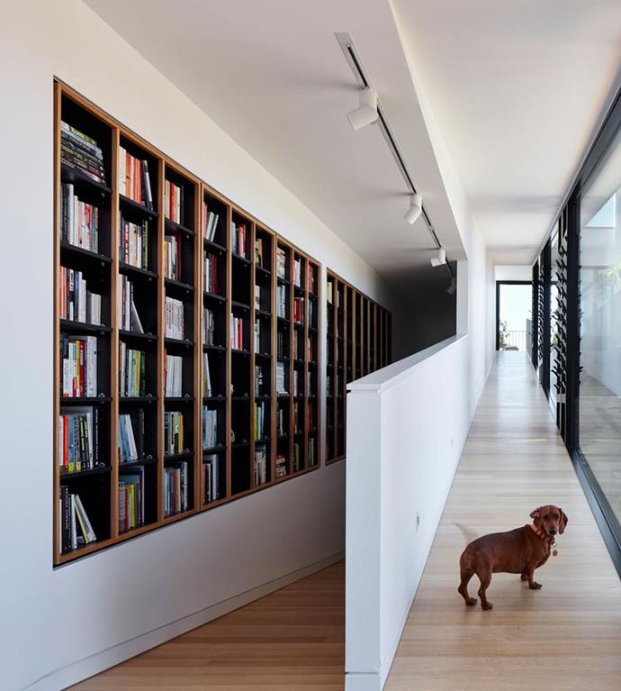 """This impressive built-in wardrobe is housed neck to the ramp that gives Audrey the Dachshund free rein of ['Skybarn' in Adelaide](https://www.homestolove.com.au/architect-designed-home-adelaide-7087