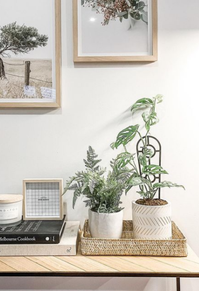 """**Plant baby home** <br><Br> Rattan trays don't always belong in the kitchen. [@life.of.sunday](https://www.instagram.com/life.of.sunday/