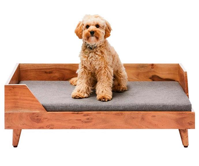 """**Fetch Scout Acacia & Grey Timber Pet Bed, from $230.99, [Adairs](https://www.adairs.com.au/homewares/pets/fetch/scout-acacia--grey-timber-pet-bed/