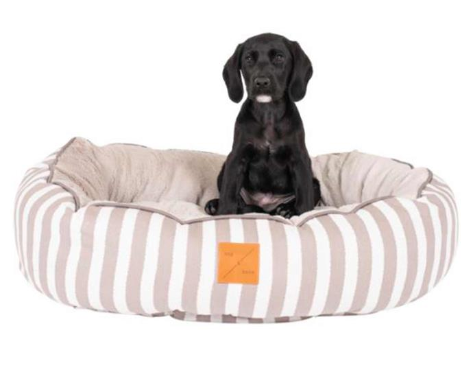 """**Mog & Bone 4 Seasons Circular Dog Bed in Latte Hamptons, $128.62, [Catch](https://www.catch.com.au/product/mog-bone-4-seasons-circular-dog-bed-latte-hamptons-6611842