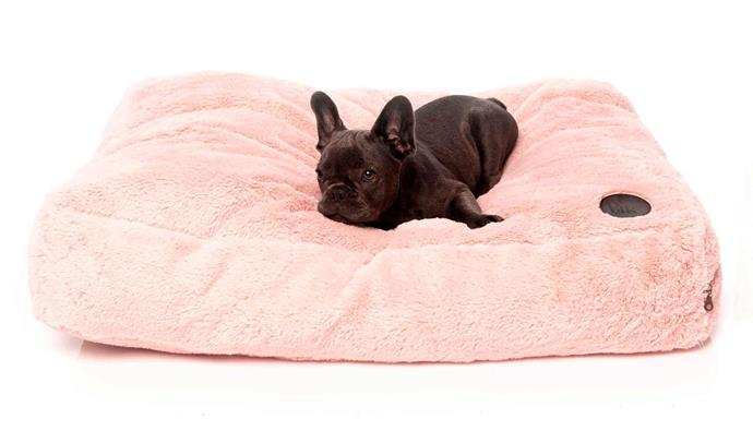 """**FuzzYard Nanook Plush Dog Pillow in Lotus Pink, $$79.99-$103.99, [PetHouse](https://www.pethouse.com.au/fuzzyard-nanook-plush-dog-pillow-lotus-pink