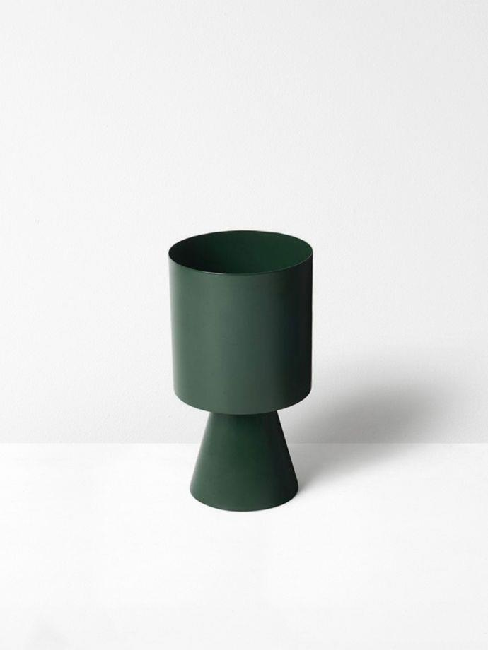 """An **[indoor plant](https://www.homestolove.com.au/top-15-indoor-plants-13251