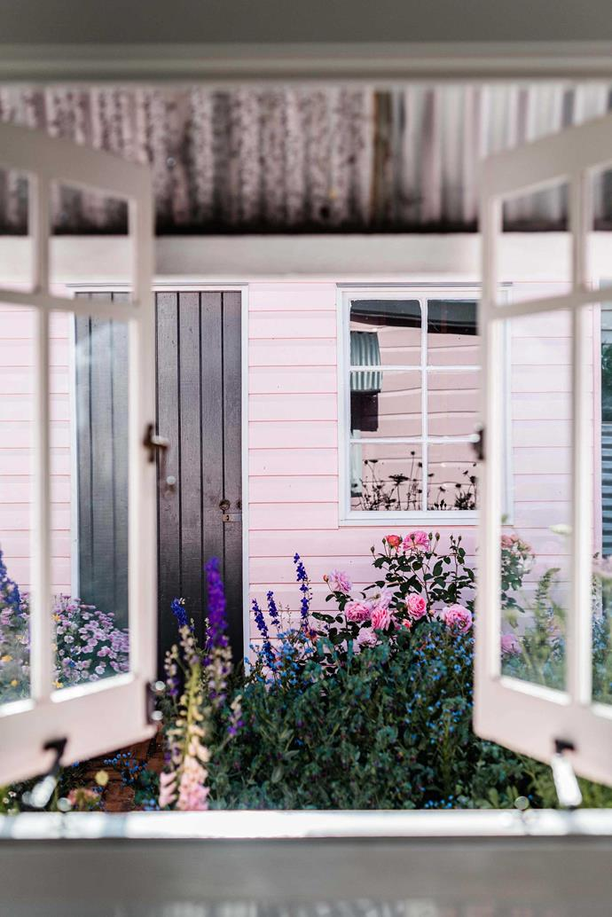 A view to the potting shed in the garden with the door painted in Dulux Monument.