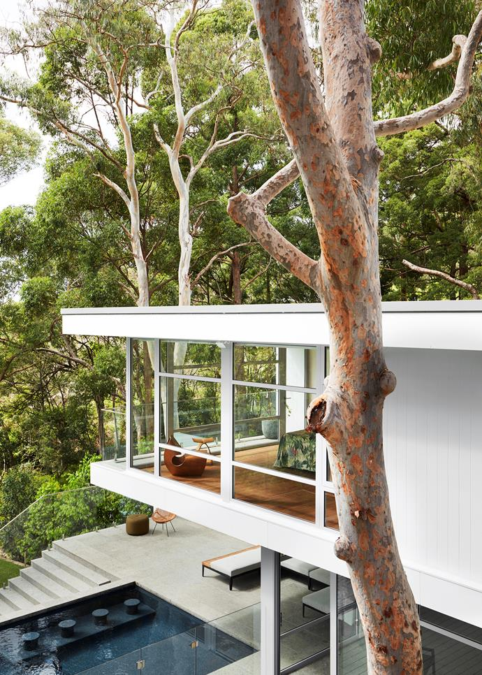 """The bushland coastal setting was an enormous inspiration in our design response for the outdoor areas and in the main suite, which virtually hangs in the surrounding bush and feels as if you could touch Sugarloaf Bay from the balcony,"" says interior designer Suzanne Gorman. ""We referenced the colours of the bush in our materials selection, particularly the trunk of the scribbly gum that dominates the rear view."""