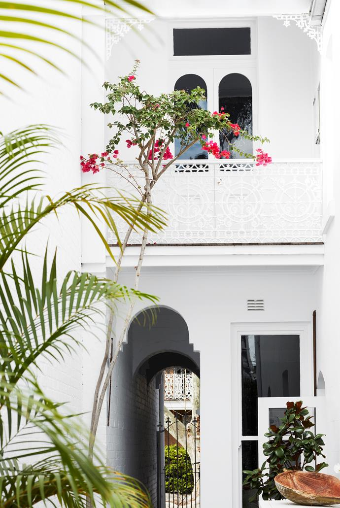 The rear courtyard is a leafy sanctuary with an appealing profusion of palms and bougainvillea.