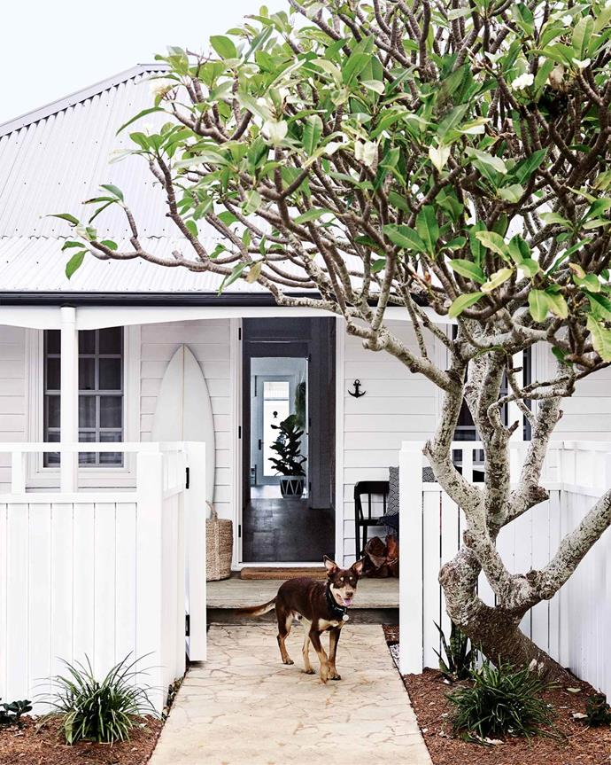 """The front of this [holiday farmhouse](https://www.homestolove.com.au/coastal-farmhouse-reno-gerringong-18827