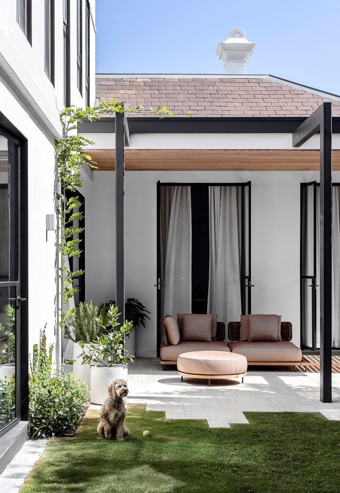 A Minotti 'Quadrado' modular sofa by Marcio Kogan from De De Ce in the rear garden makes a shaded spot even more inviting. Pots from Robert Plumb.