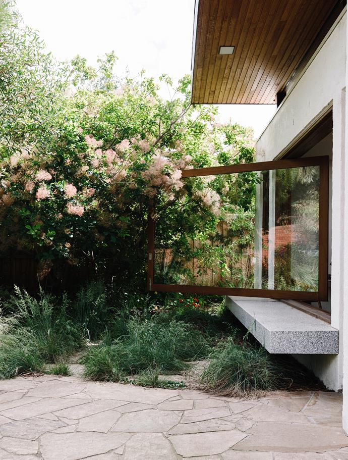 At the homeowners' request, Sam retained an existing smokebush (*Cotinus coggygria*), incorporating it into the understated bushland palette. Tussock grass (*Poa labillardieri*) forms the lower level planting. The random paving is Castlemaine slate.