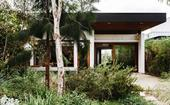 A naturalistic inner-city garden inspired by the Australian bush