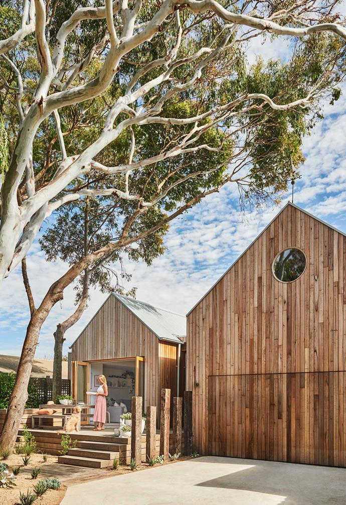 """**Exterior** Owner Briony and dog Clive at their home beneath the gum trees. The facade's silvertop ash is from [Barwon Timber](https://barwontimber.com.au/