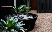 How to add a fish pond to your garden