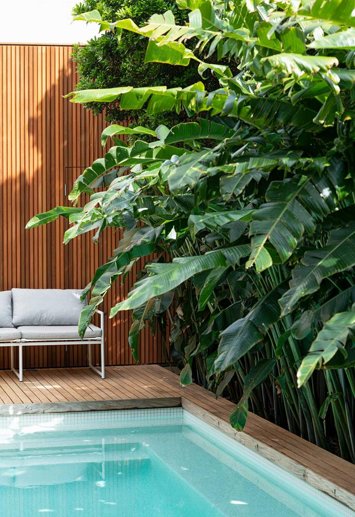 The hardy plants beside the pool are resistant to pool chemicals.