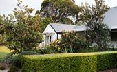 A coastal garden with formal elements in Wamberal, NSW