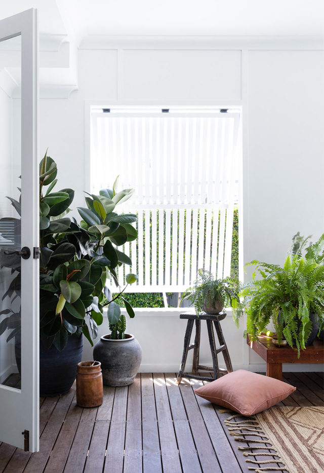 """[Indoor plants](https://www.homestolove.com.au/the-best-indoor-plants-to-suit-your-style-6625 target=""""_blank"""") will instantly enliven a space. Keep them off the floor to prevent water damage. Plants are in abundance on the back deck in this [white and fresh beachside abode in Queensland](https://www.homestolove.com.au/white-coastal-home-queensland-22306 target=""""_blank""""), adding to the tropical feel."""