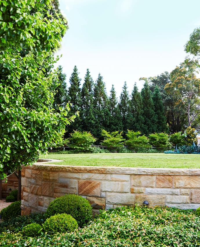 Sydney sandstone is used for the retaining walls in the front garden, where recurring plantings of buxus, jasmine and ornamental pears lend a sense of formality.