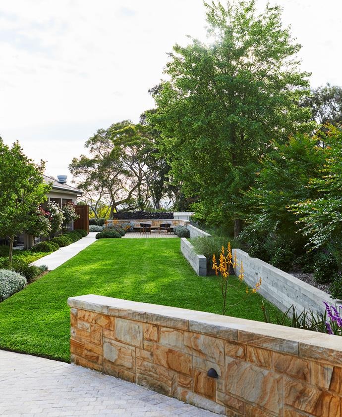 """Matt's design incorporates open, level stretches of lawn like this one along the side of the house. The lawn is Sir Walter buffalo: """"It's slower-growing so doesn't require as much mowing and naturally suppresses weeds due to its thickness,"""" he says. Along the right-hand border is a row of weeping white crepe myrtle (Lagerstroemia 'Acoma')."""