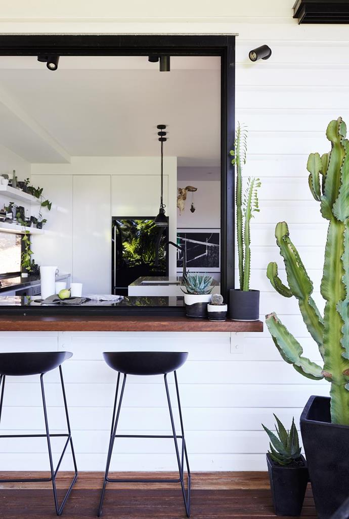"""The kitchen extends to the outdoors with a clever addition of a servery and plenty of cacti interior plants in this [DIY home renovation in Queensland](https://www.homestolove.com.au/tips-from-a-diy-renovation-of-a-workers-cottage-5060