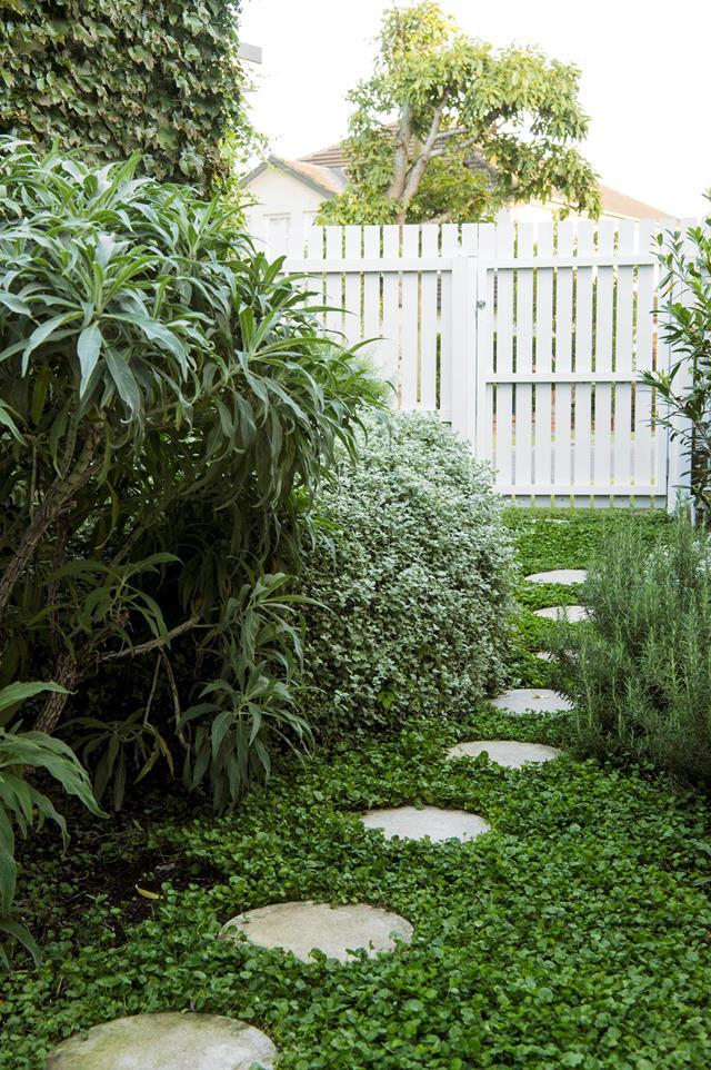 """Garden designer Fiona Ericsson of Sticks & Stones Landscape Design has created a gentle, meandering path with informal garden beds of attractive, easy-care plantings. """"In [small spaces](https://www.homestolove.com.au/compact-landscape-designs-21251
