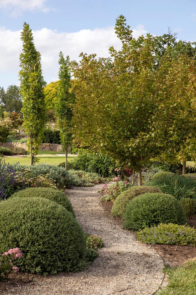 """Freshly graduated landscape designer Sam Crawford used her own [garden in rural Victoria](https://www.homestolove.com.au/rural-garden-landscape-design-21930