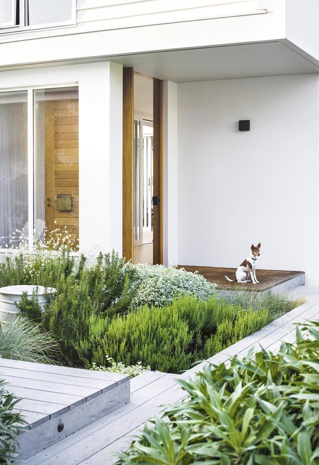 """Fragrant plantings combine with a relaxed, contemporary approach in this [family-friendly garden](https://www.homestolove.com.au/this-family-friendly-garden-is-a-lush-urban-haven-for-bees-7006