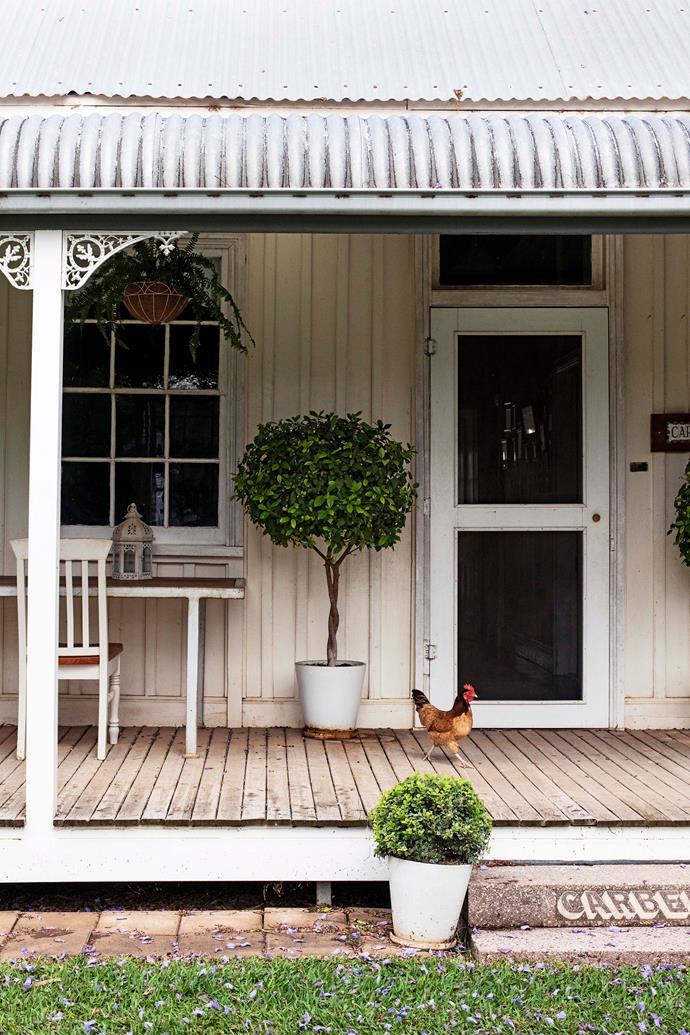 The bullnose verandah.