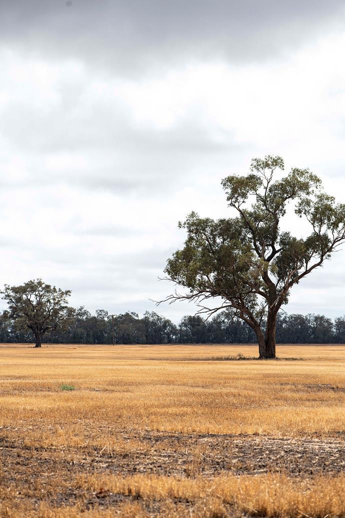The striking landscape.