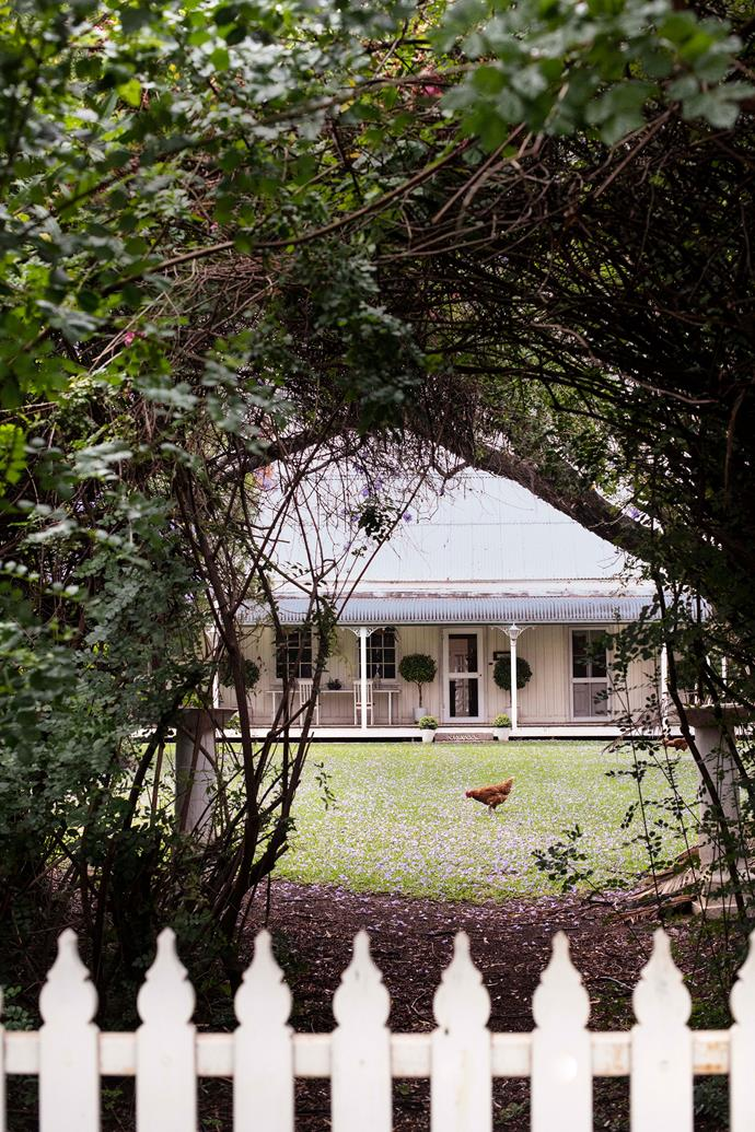 The Knight family's 1891 homestead, Carbeen.