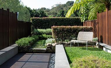 5 expert landscaping solutions for small gardens