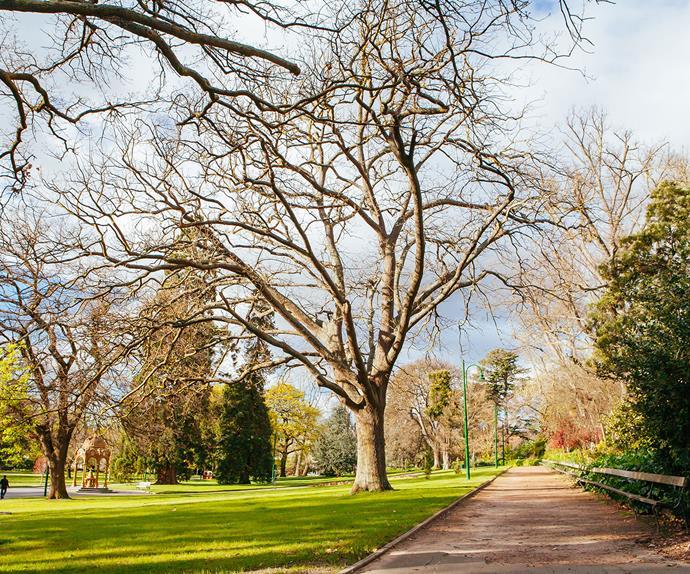City Park Launceston, TAS
