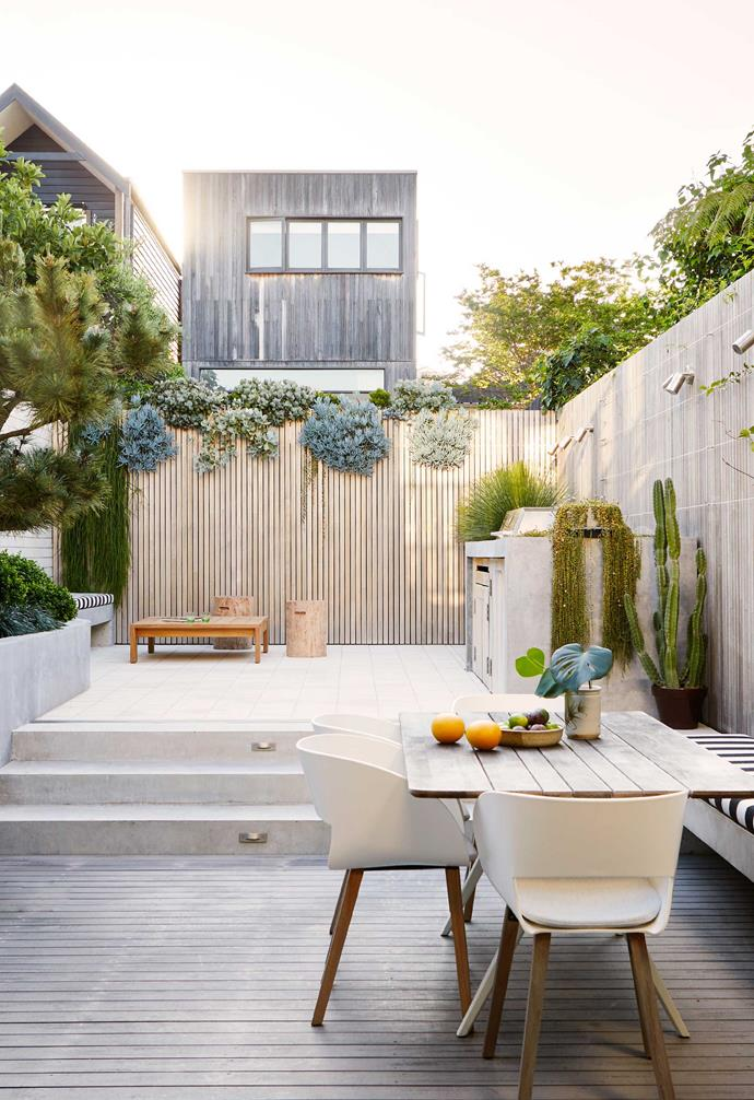"""This courtyard is brilliantly suited to a couple who don't love gardening. A cardboard cycad (*Zamia furfuracea*) sits in a pot from [Hibernate Outdoors](https://hibernateoutdoors.com.au/ target=""""_blank"""" rel=""""nofollow""""). Tribù 'Vintage' chairs and Gloster 'Split' table, [Cosh Living](https://coshliving.com.au/ target=""""_blank"""" rel=""""nofollow""""). Banquette seat, [Inform](https://informdesign.com.au/ target=""""_blank"""" rel=""""nofollow""""). Wall lights, [Gardens At Night](https://www.gan.com.au/ target=""""_blank"""" rel=""""nofollow"""")."""