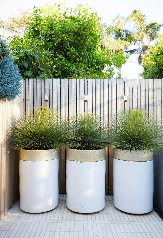 """At the back of the courtyard, twin-flowered agaves in custom pots from [Cameron Williams Pottery](https://www.instagram.com/cameron_williams_pottery/?hl=en target=""""_blank"""" rel=""""nofollow"""") make a statement in what could otherwise be an idle space beside the BeefEater stainless-steel barbecue."""