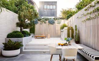 A pared back courtyard garden with low-maintenance plants