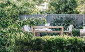 How to create a lush garden that thrives
