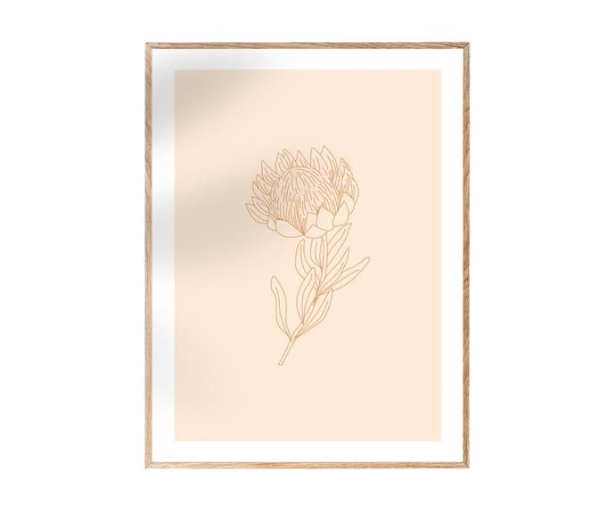 """**[Australian Botanical Floral Pastel 'Protea' print (Bushfire Fundraiser), from $20, Etsy](https://www.etsy.com/au/listing/769557181/australian-botanical-floral-pastel-print