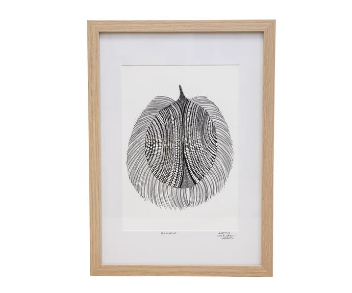 """**[Echidna art print by Delvene Cockatoo-Collins, $100, Delvene Cockatoo-Collins](https://cockatoocollins.com/collections/all-products/products/echidna-framed-signed-a4-print