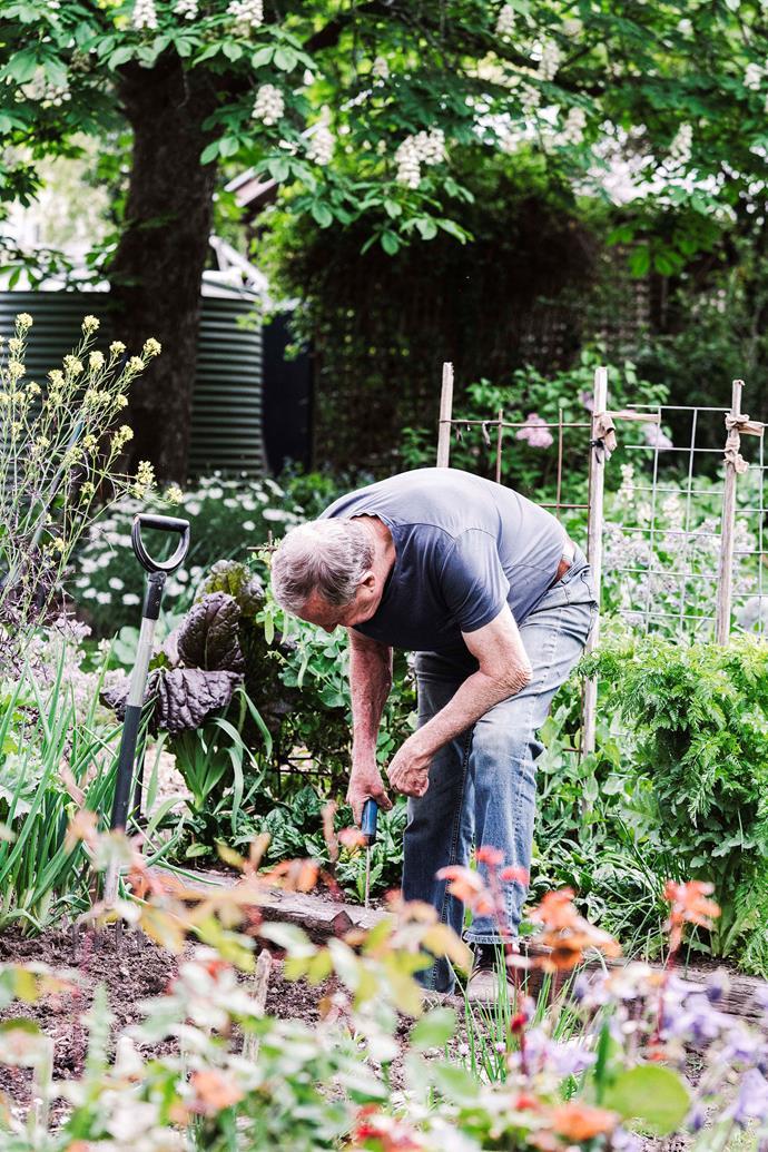 John tends to the garden.