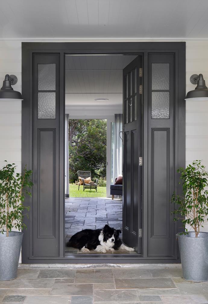 "Matilda the border collie sits by the [front door](https://www.homestolove.com.au/front-doors-australia-6476|target=""_blank"") painted in Dulux Mt Eden."