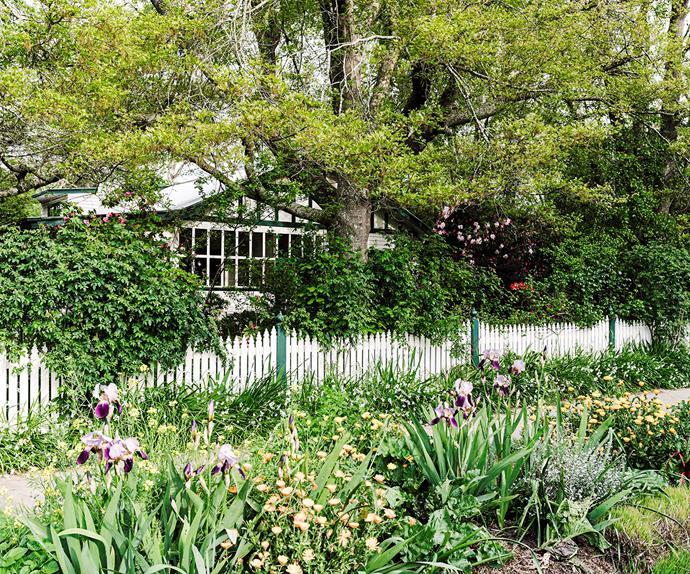 1920s weatherboard cottage with verge garden