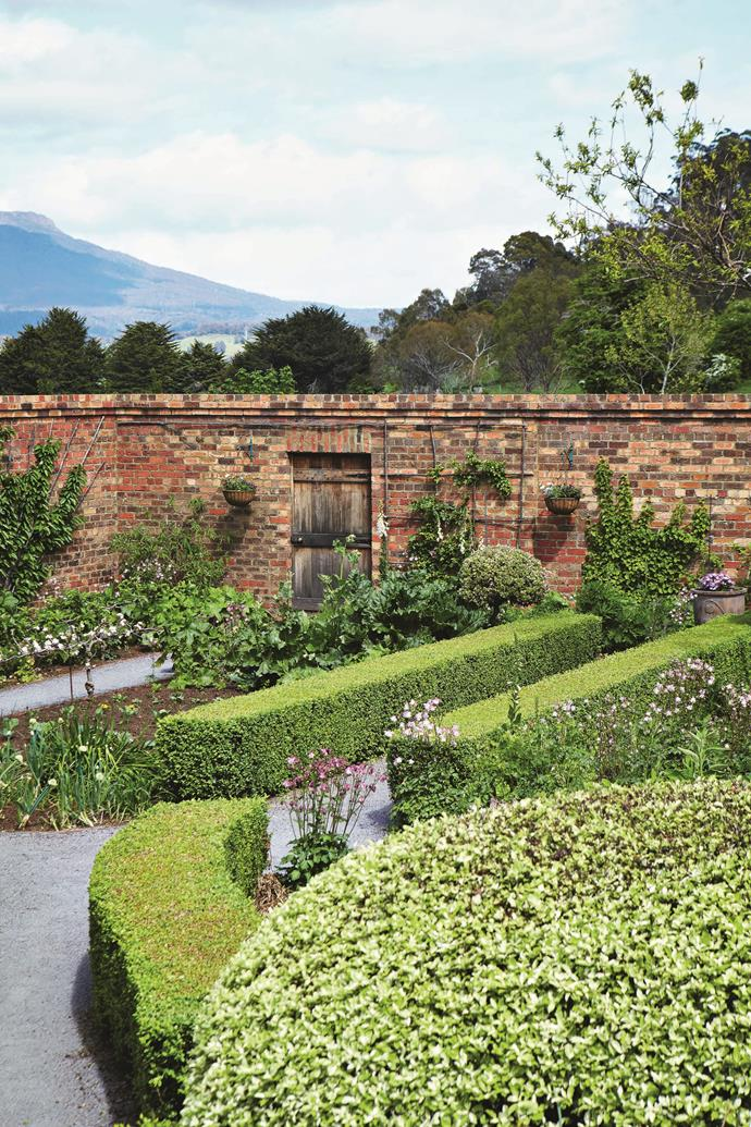 """Fruit trees and [flowering plants](https://www.homestolove.com.au/the-best-flowering-plants-for-summer-4538