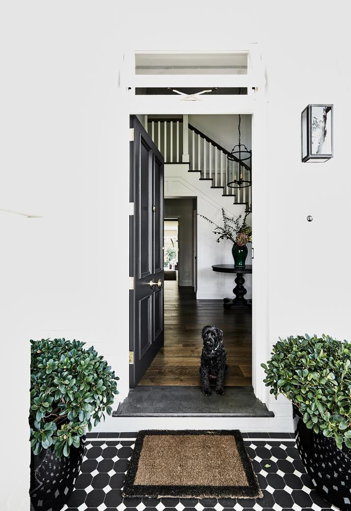 This spacious abode on Sydney's upper north shore was reworked by homeowner Nerida, whose vision paved the way for a serene home for herself, husband James and their two teenage sons Hugo and Ethan. Maggie greets visitors at the home's newly created front door.